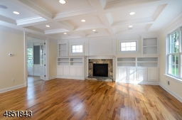 Coffered ceiling, custom built-ins and gas fireplace