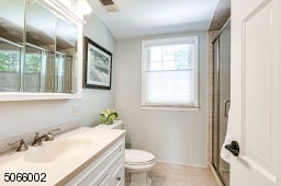 Large Vanity & Shower.