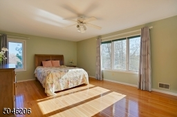 Master suite with walk in closet, full bath and ceiling fan.