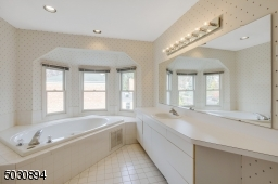 soaking tub, stall shower & large vanity