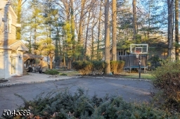 Light up basketball area, also features a fenced in area for your furry friends,