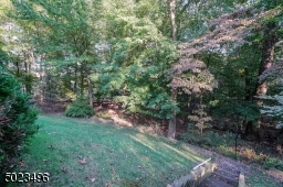 The yard continues into the wooded area.