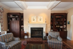Statement fireplace flanked by built in bookcases and highlighted by spotlights